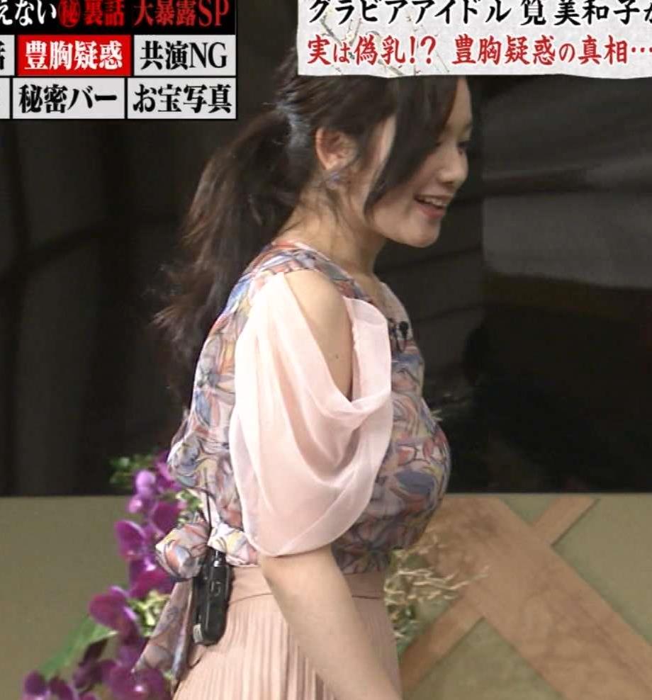 筧美和子 Eカップと公表した横乳すごすぎ。